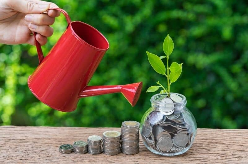 Mutual Funds With The Growth Option